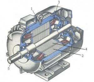 Электровигатель в разрезе
